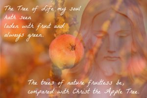 christ-the-apple-tree-1